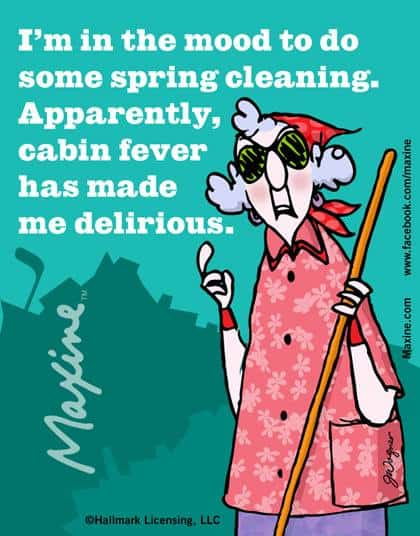 Spring Cleaning Housewives Of Riverton