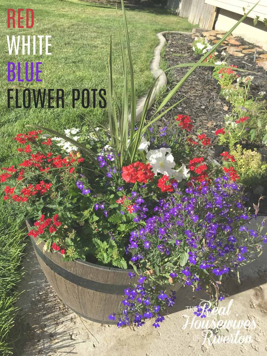 Red white and blue flower pots housewives of riverton izmirmasajfo