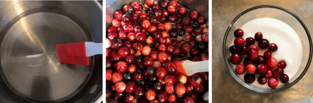How to make Sugared Cranberries | www.housewivesofriverton.com