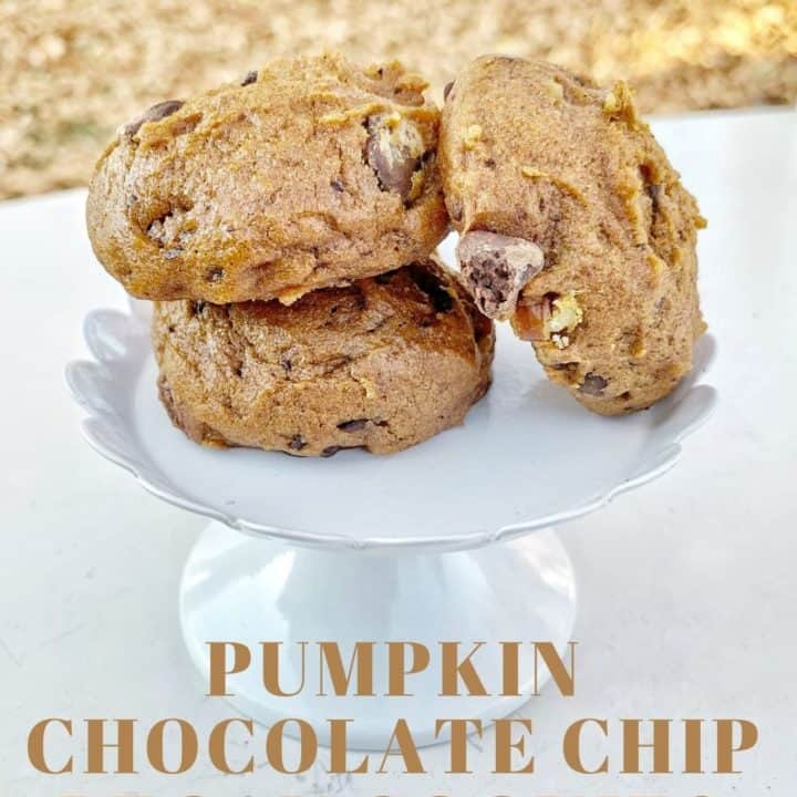Pumpkin Chocolate Chip Pecan Cookies